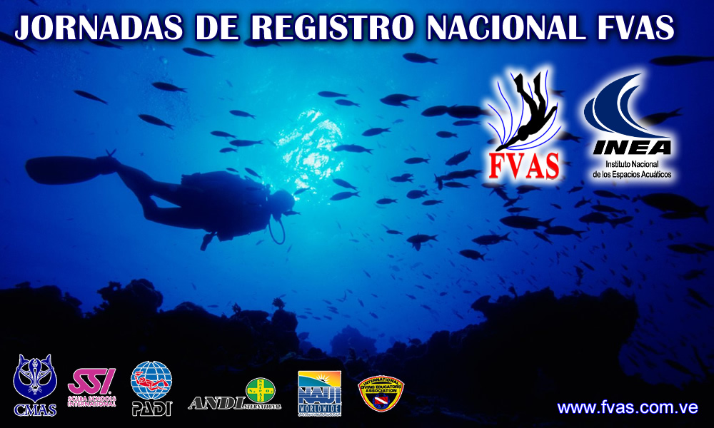 jornada-registro-buceo-fvas-2013