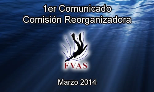 comunicado-fvas-2014