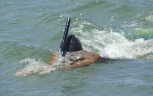 nadador aguas abiertas